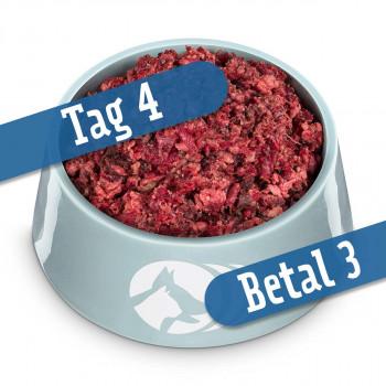 Power-mix - Tag 4, betal 3